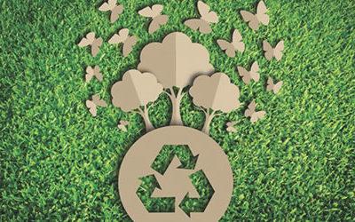 """Paoletti Ecologia, quando """"Green"""" diventa business."""